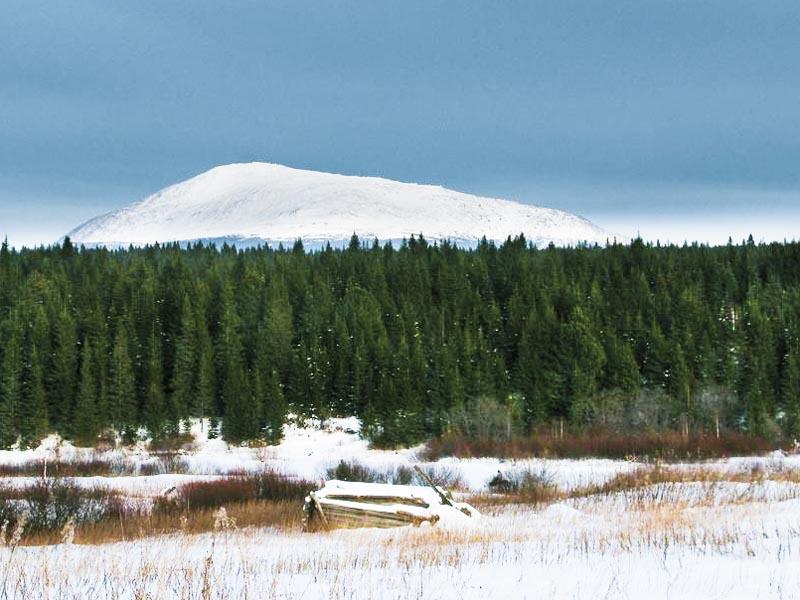 Растесс и гора Косьвинский камень
