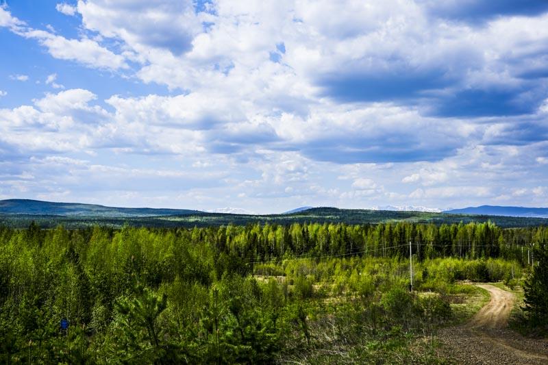 Урал в окрестностях горы Гумбольдта