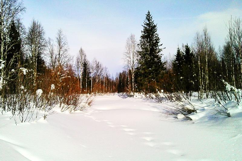 Лобва зимой
