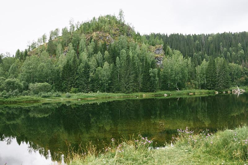 Летняя Койва