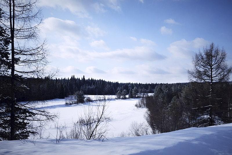 Река Ляля зимой
