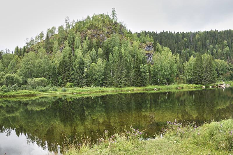 Река Вязовка и гора Боринская