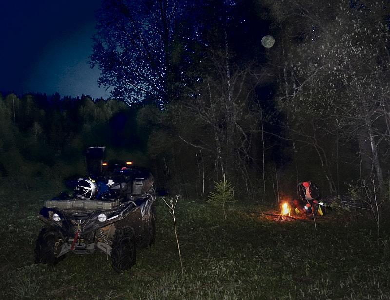 НЛО в лесу