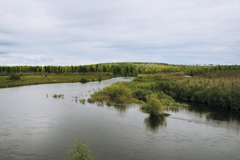 Маршрут до реки Вижай